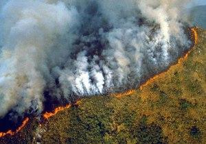 amazon-rainforest-fires-nasa-space-photos